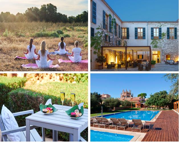 Dream Team Retreat – Mallorca 2019